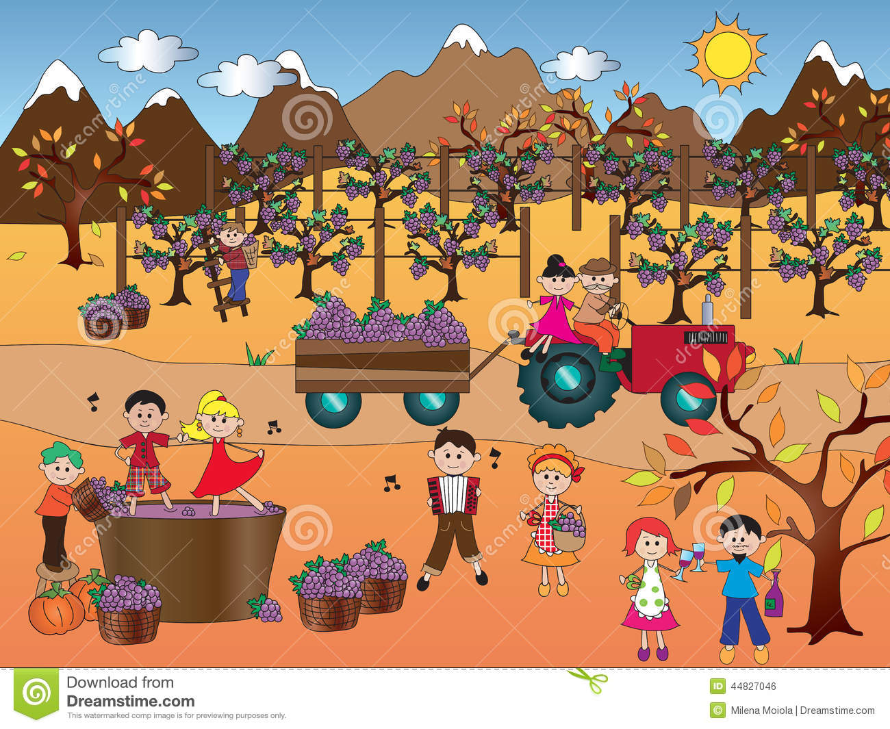 Grape Harvest Stock Illustration - Image: 44827046