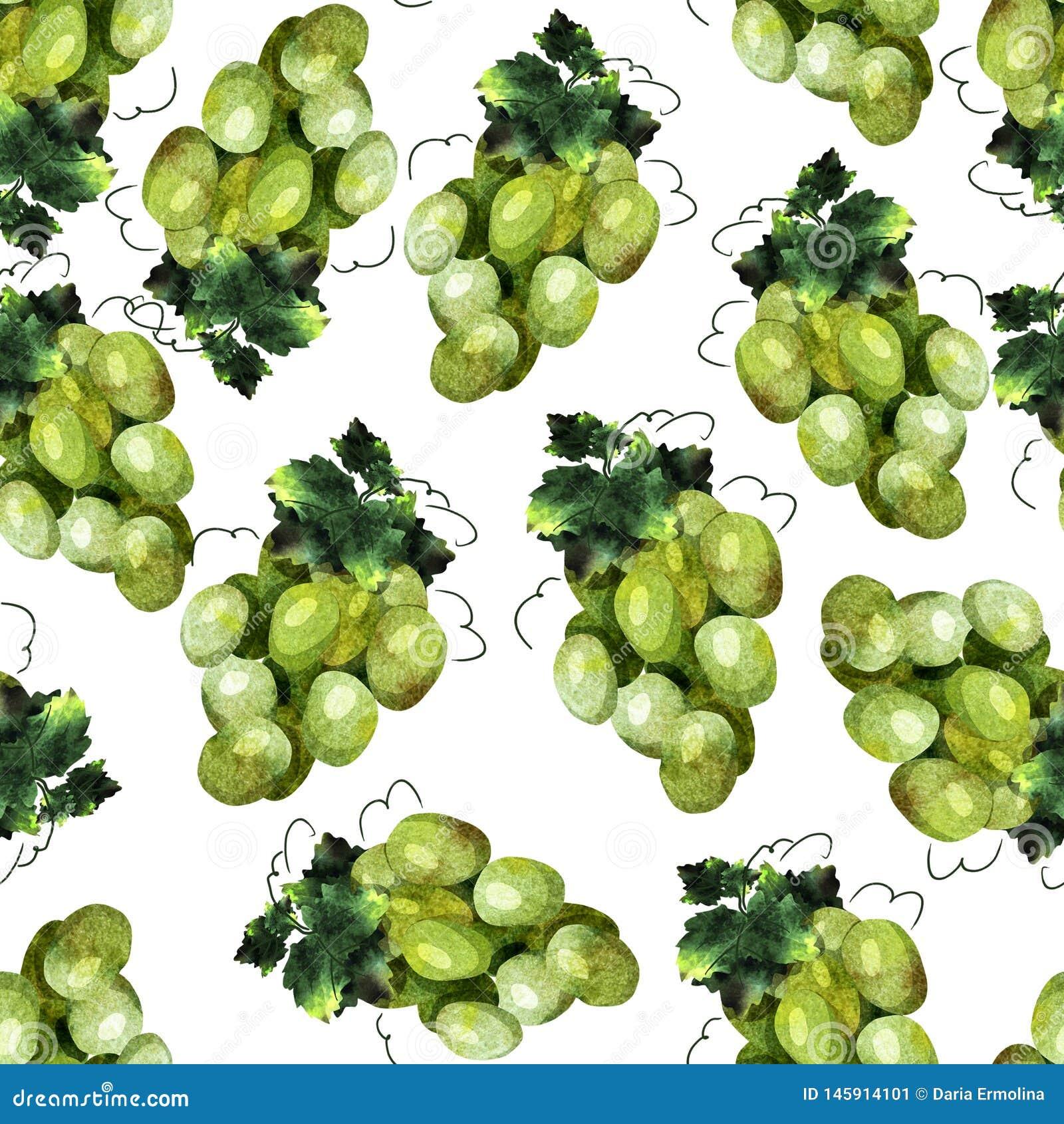 Green grape pattern