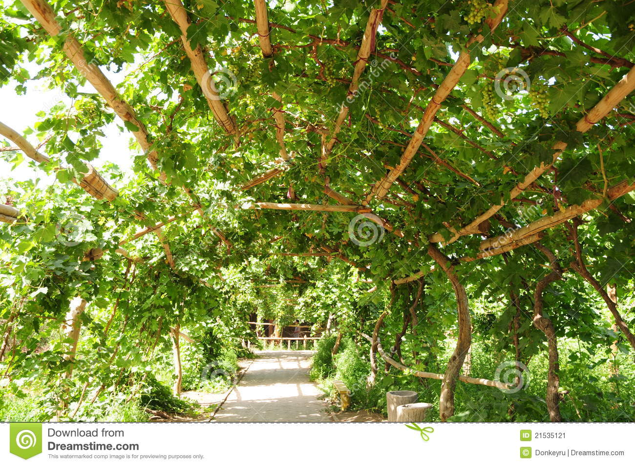 Image Result For Gpergola Designs