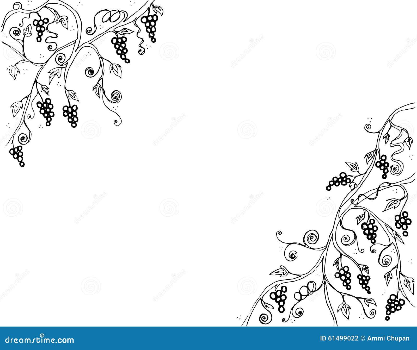 Grape Vine And Branch Illustration Line Art Black And White ... for Drawing Grape Vines  165jwn