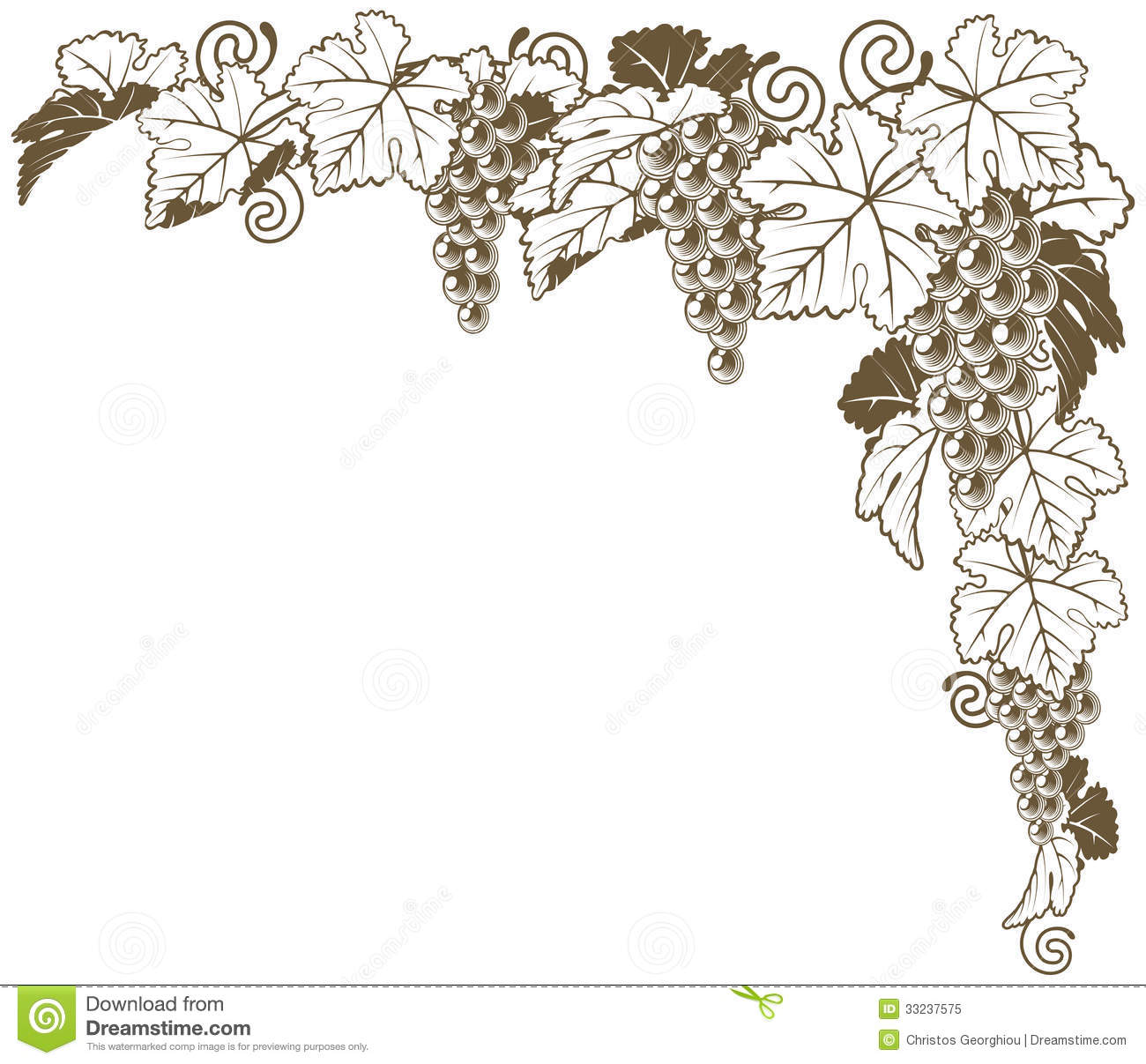 Grape Vine Corner Ornament Royalty Free Stock Photo - Image: 33237575 Vintage Border Vector