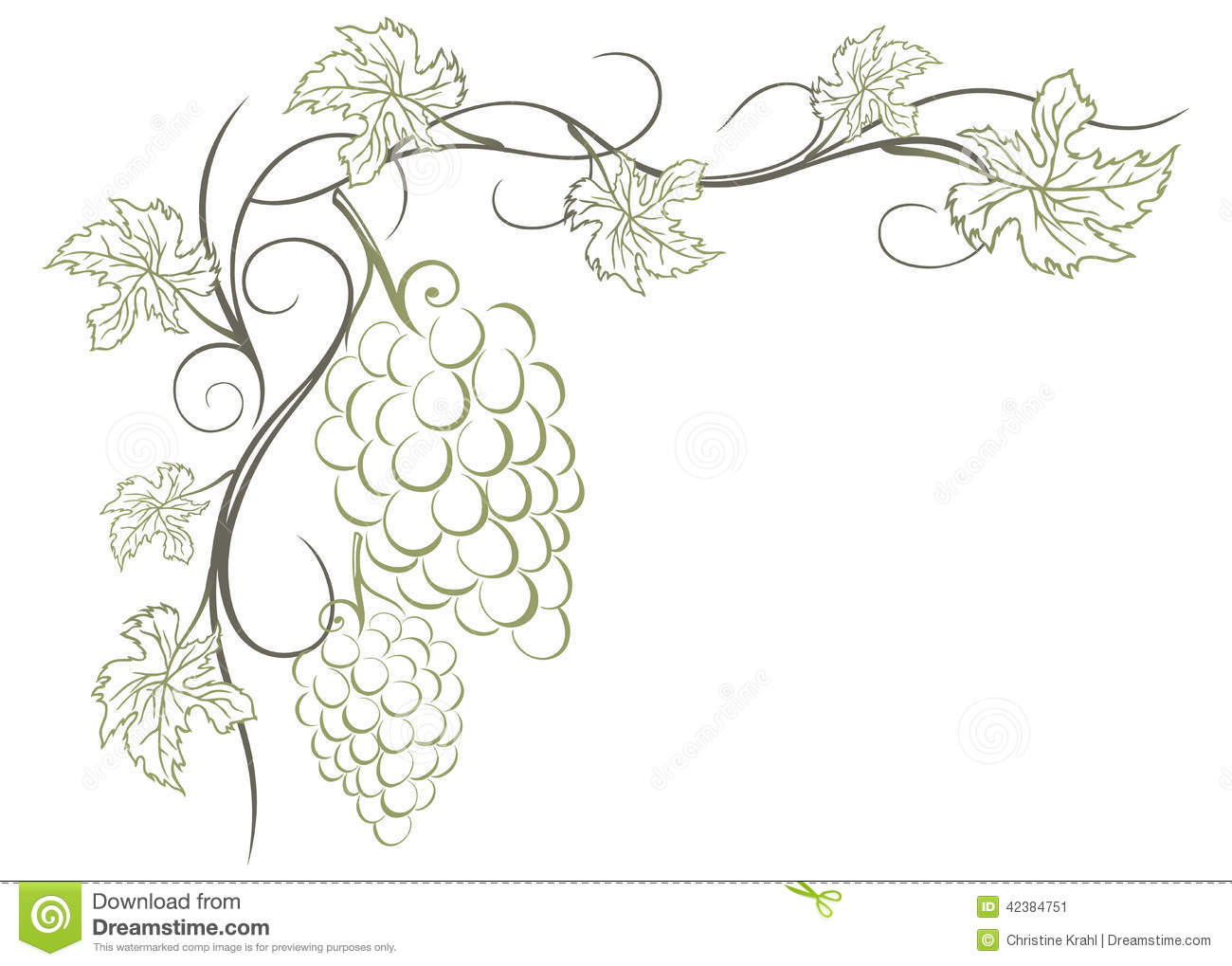 Grape Vines Stock Vector - Image: 42384751