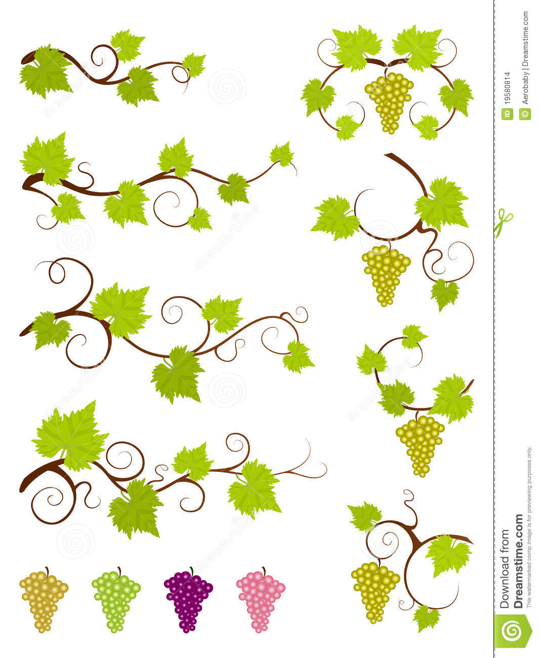 Grape Vines Design Elements Set. Stock Images - Image: 19580814