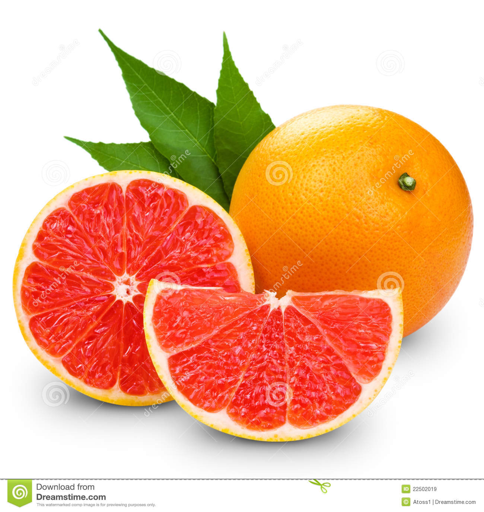 grapefruit royalty free stock images image 22502019 free clipart of apple hill free clipart of apple hill