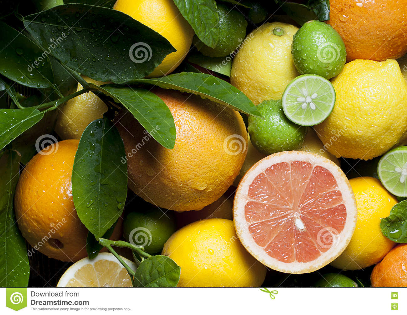 Grapefruit Oranges Lemons Limes