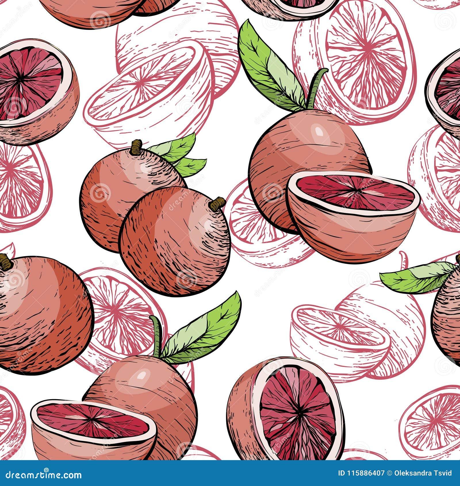 Grapefruit pattern. Seamless background. Citrus fruit Juicy background . Citrus seamless pattern with grapefruit.