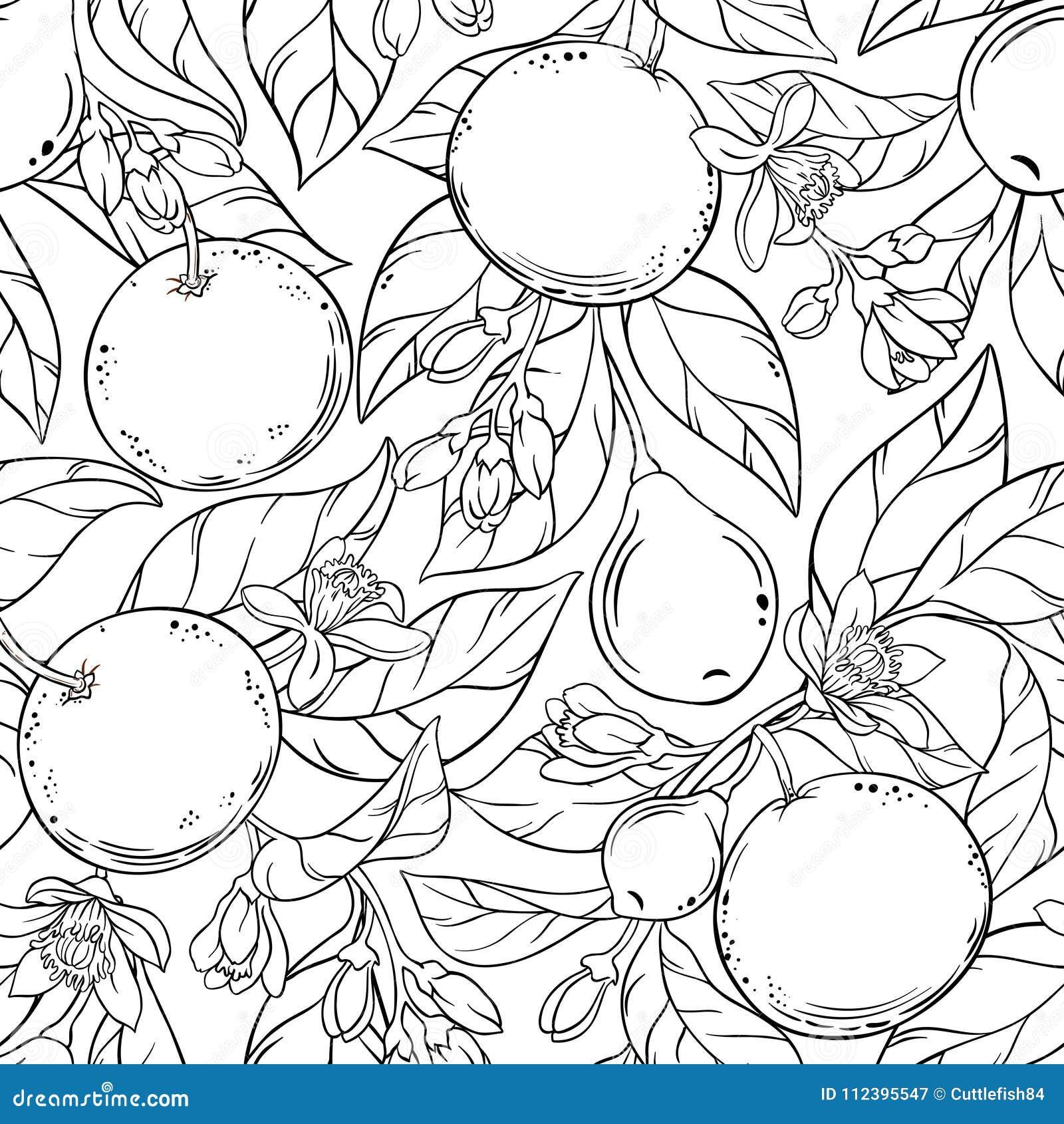 Grapefruit vectorpatroon