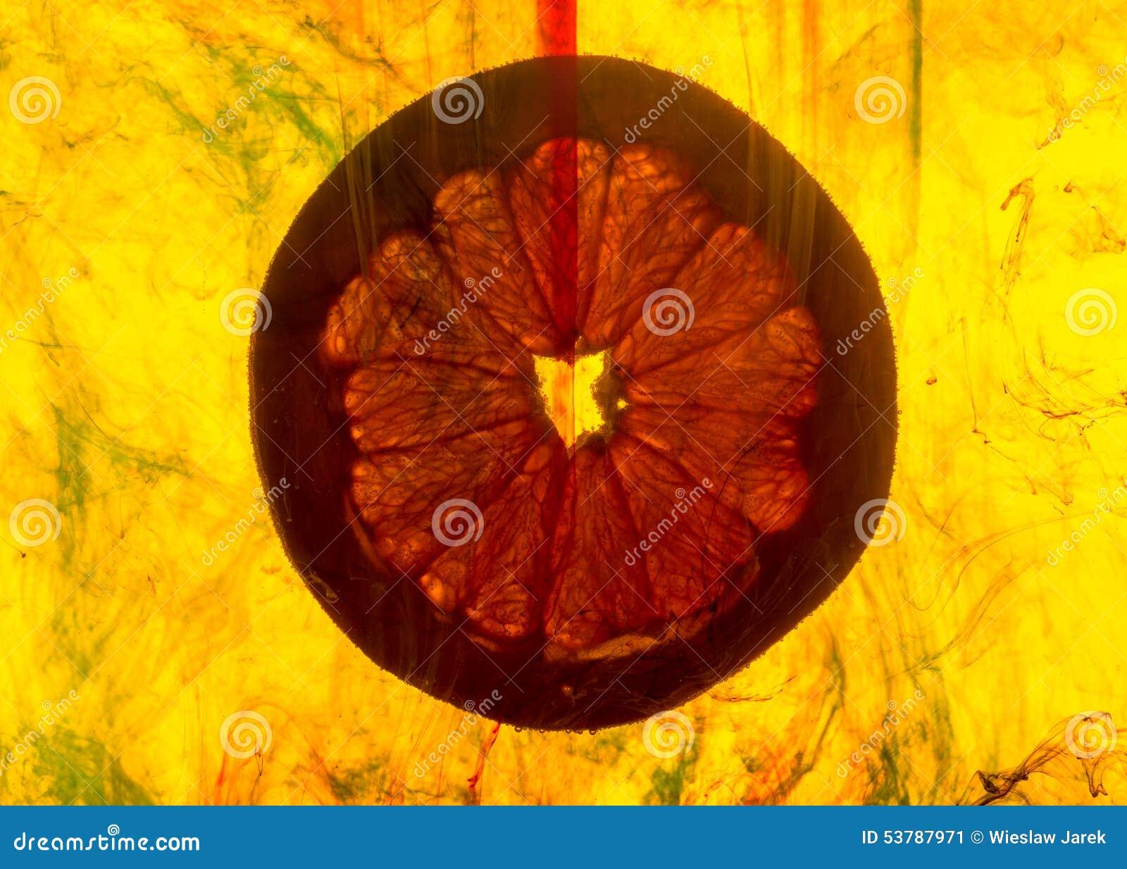 Grapefruitowy plasterek w wodzie