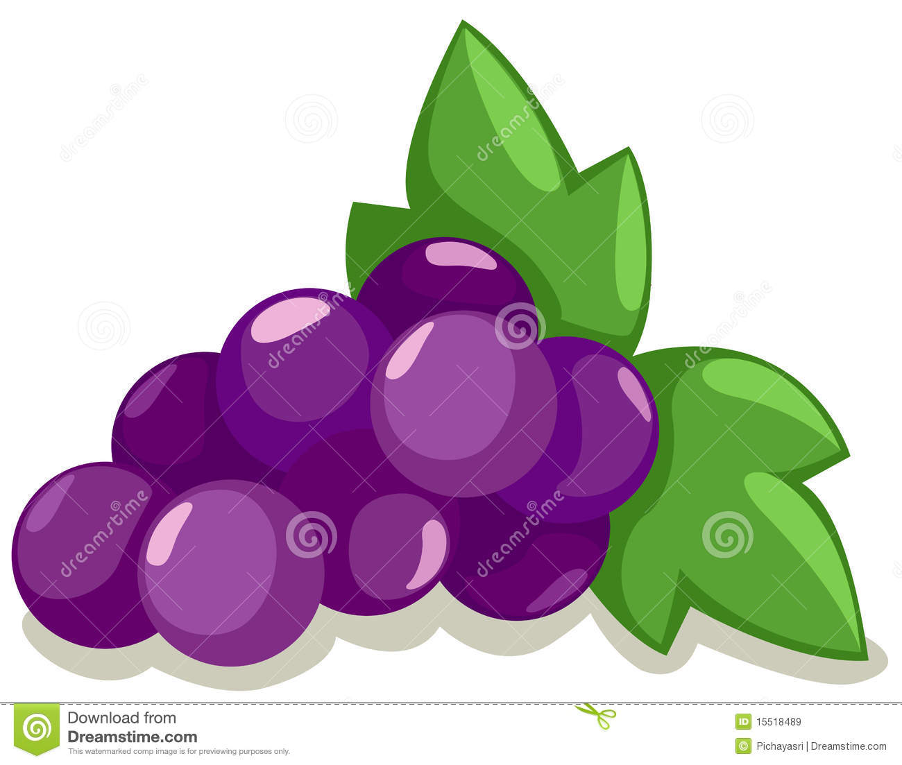 Grapes Royalty Free Stock Images Image 15518489