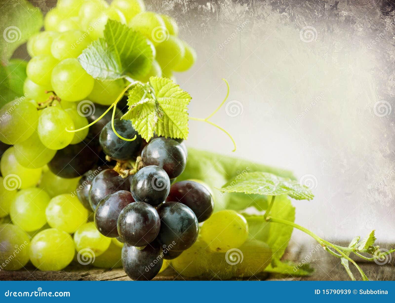 Grapes border design