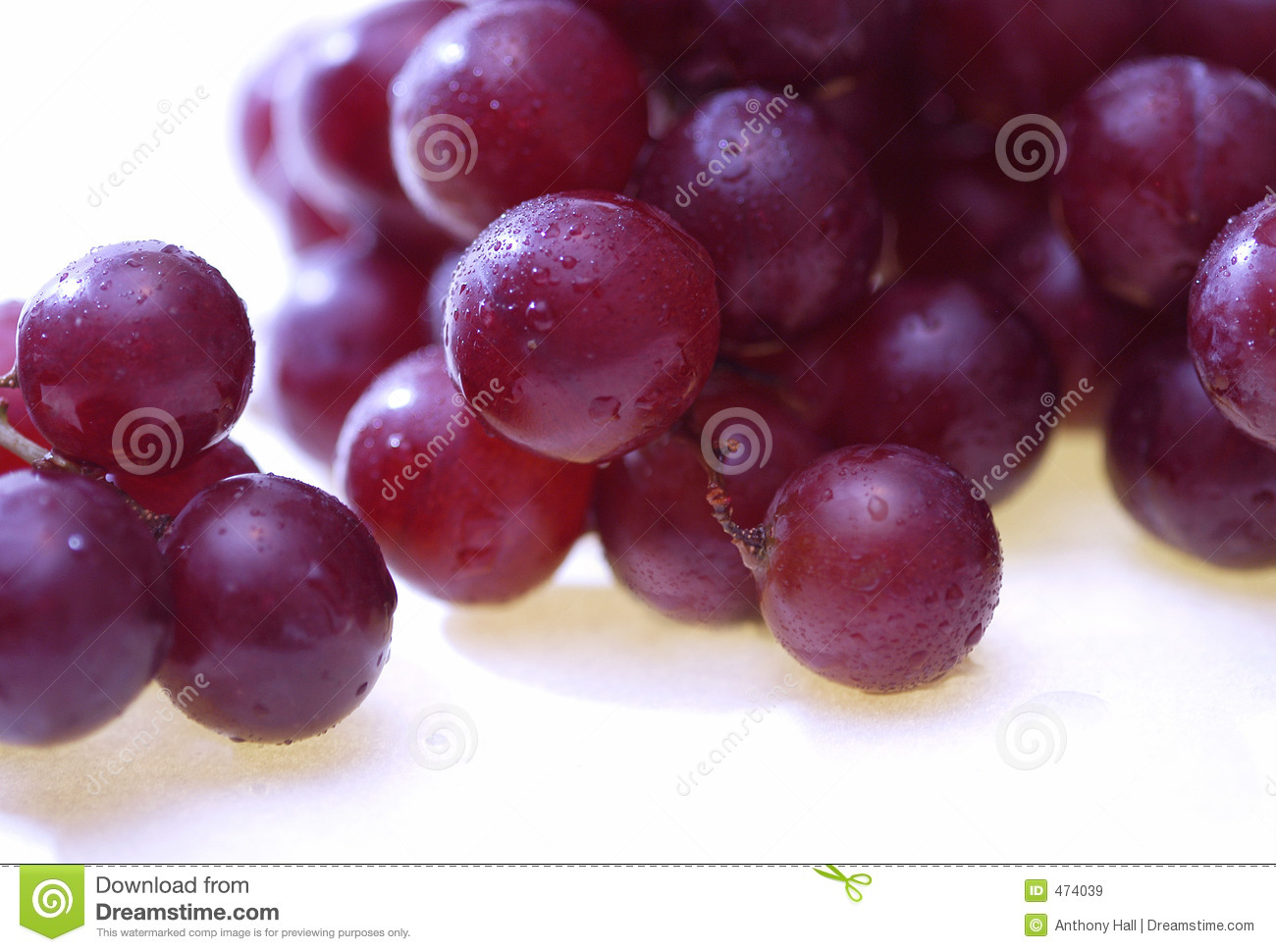 Download Grapes with condensation stock image. Image of vineyard - 474039