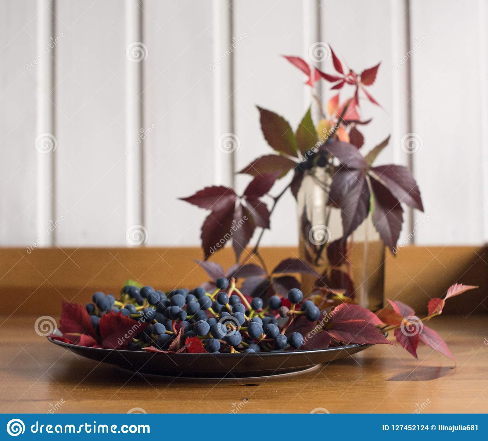 plate grapes red leaves blue berries still life