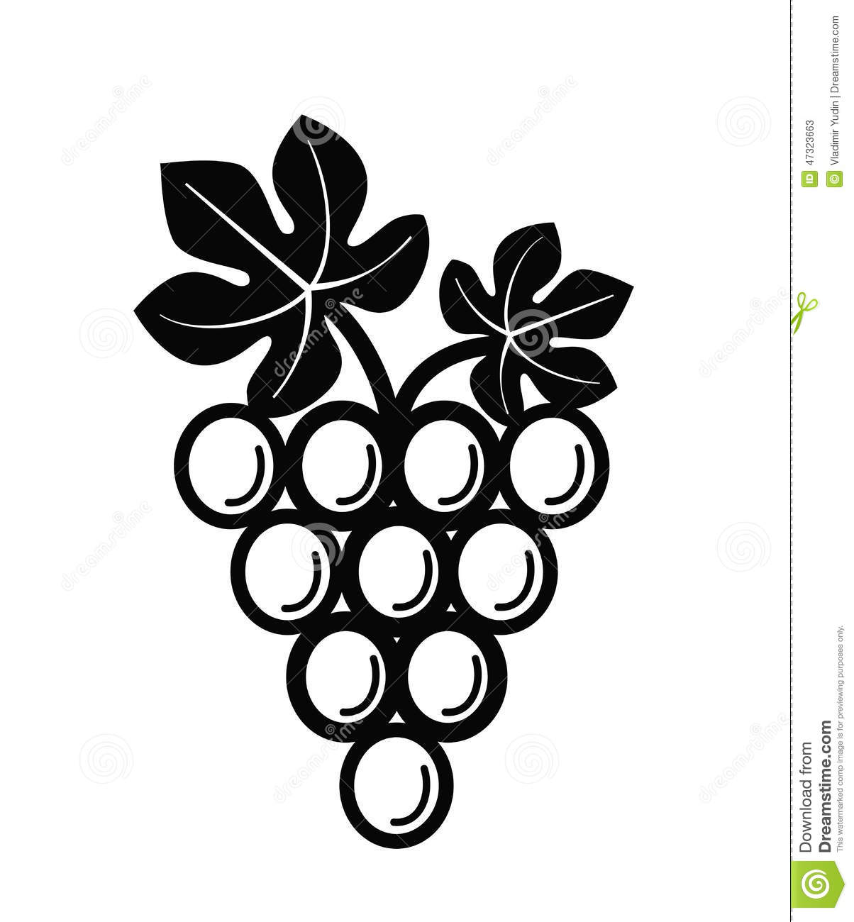 Vector black illustration of grapes on white.