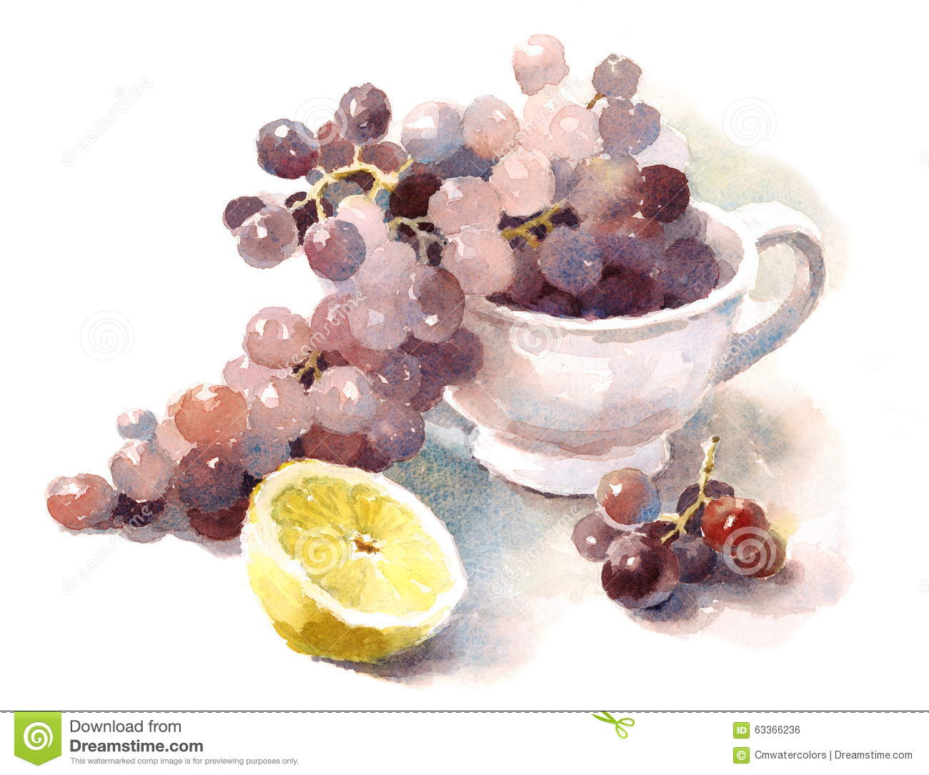 Grapes Watercolor Food Illustration Hand Painted Stock ...