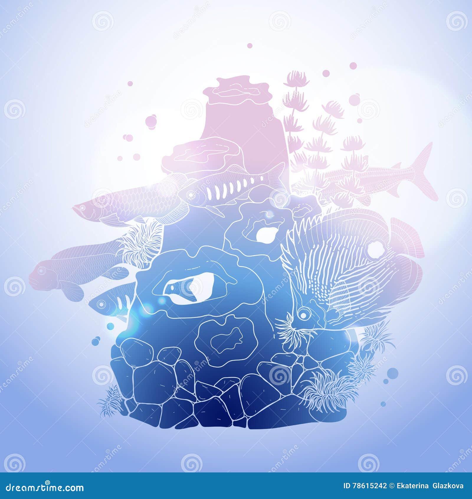 Line Art Underwater : Graphic aquarium fish with coral reef vector illustration