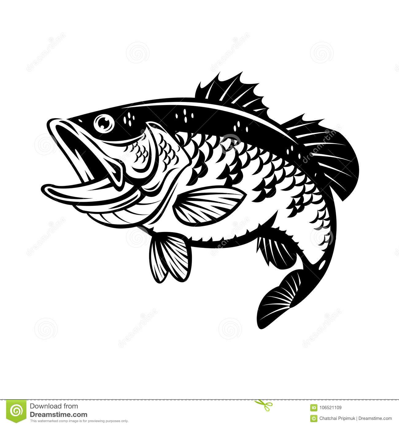 Graphic Bass Fish Vector Stock Vector Illustration Of Logo 106521109