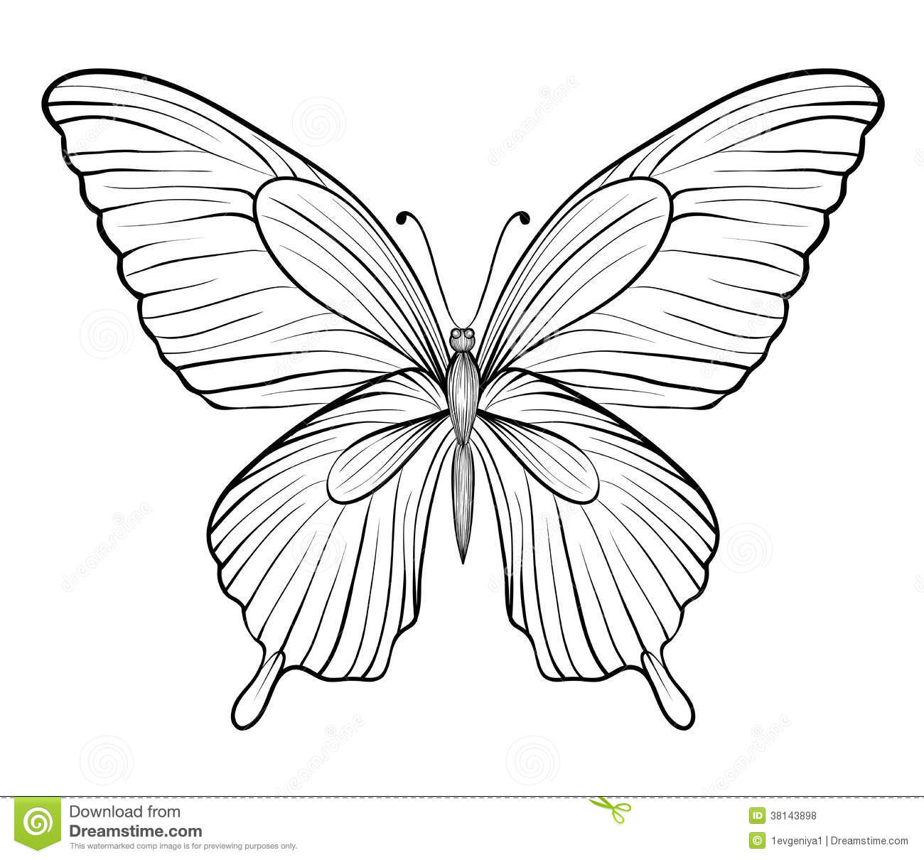An analysis of white butterfly a novel