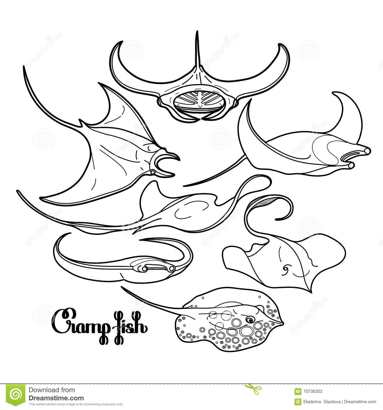 graphic cramp fish collection stock vector