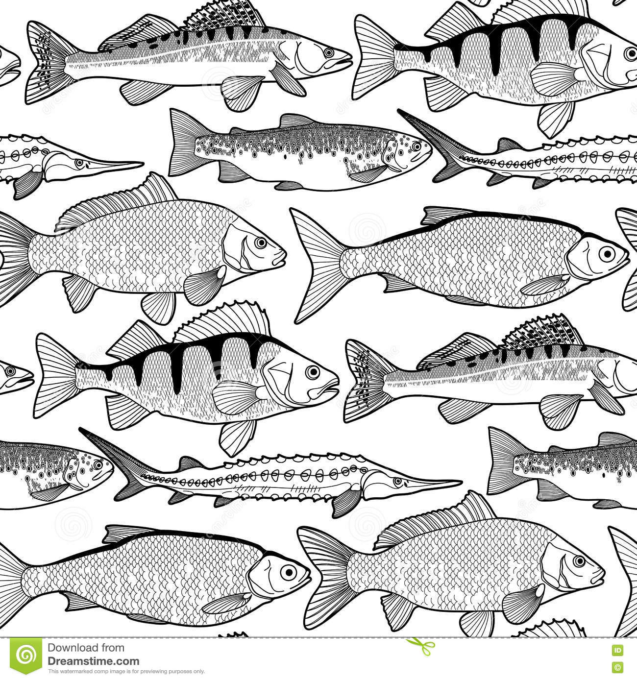 Graphic Freshwater Fish Pattern Stock Vector ...