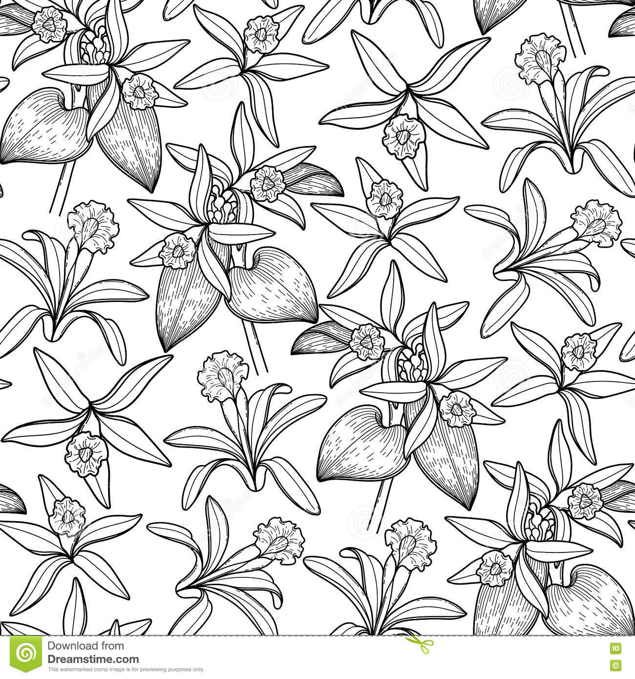 graphical coloring pages - photo#39