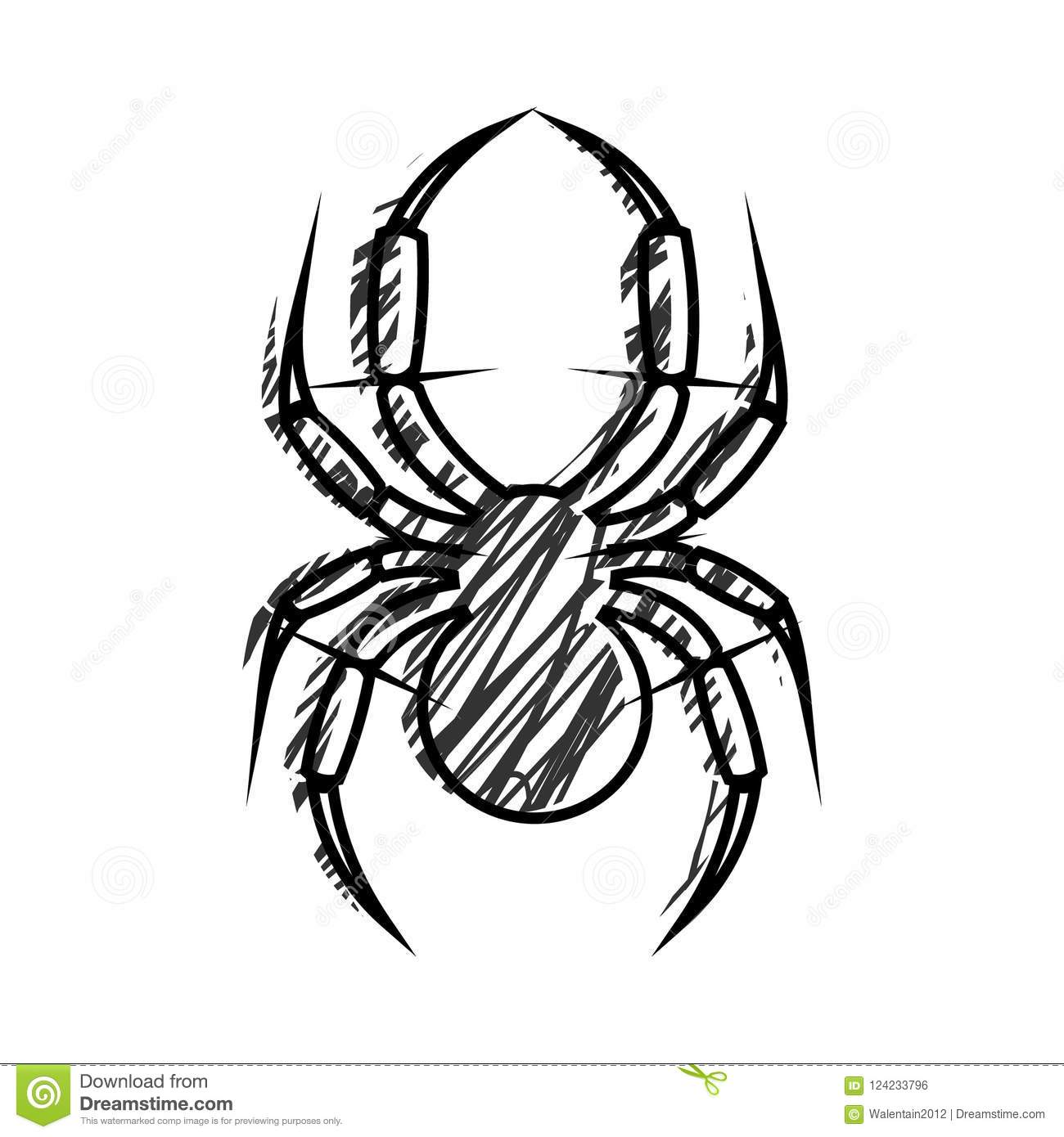 Graphic Vector Illustration Of Insect Black And White Hand Draw