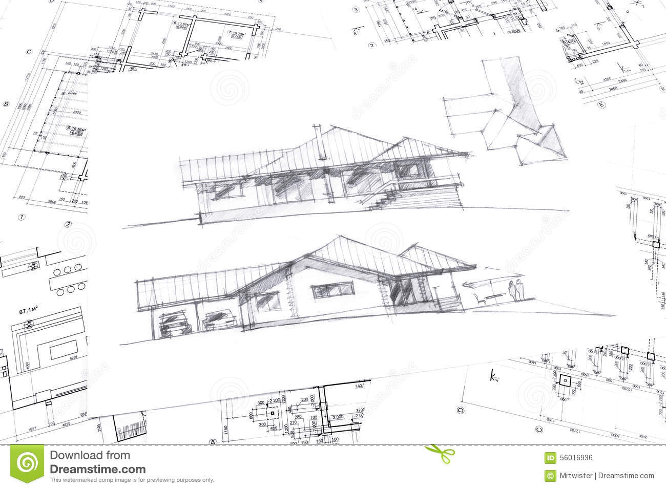 Graphical Sketch Of New House Stock Illustration Image 56016936