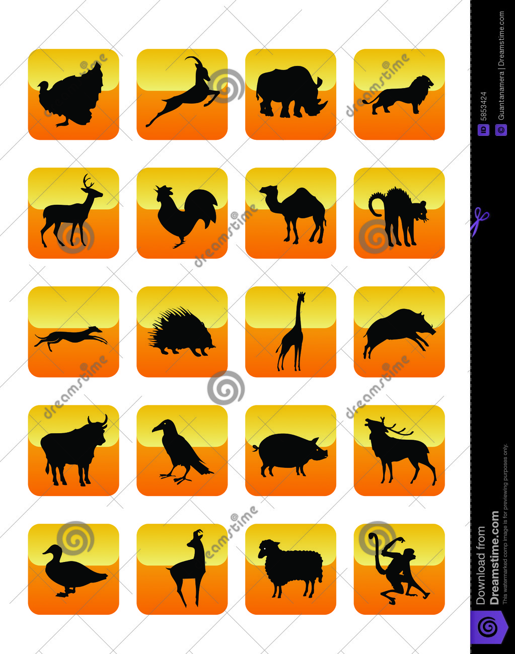 Graphismes 01 d animaux