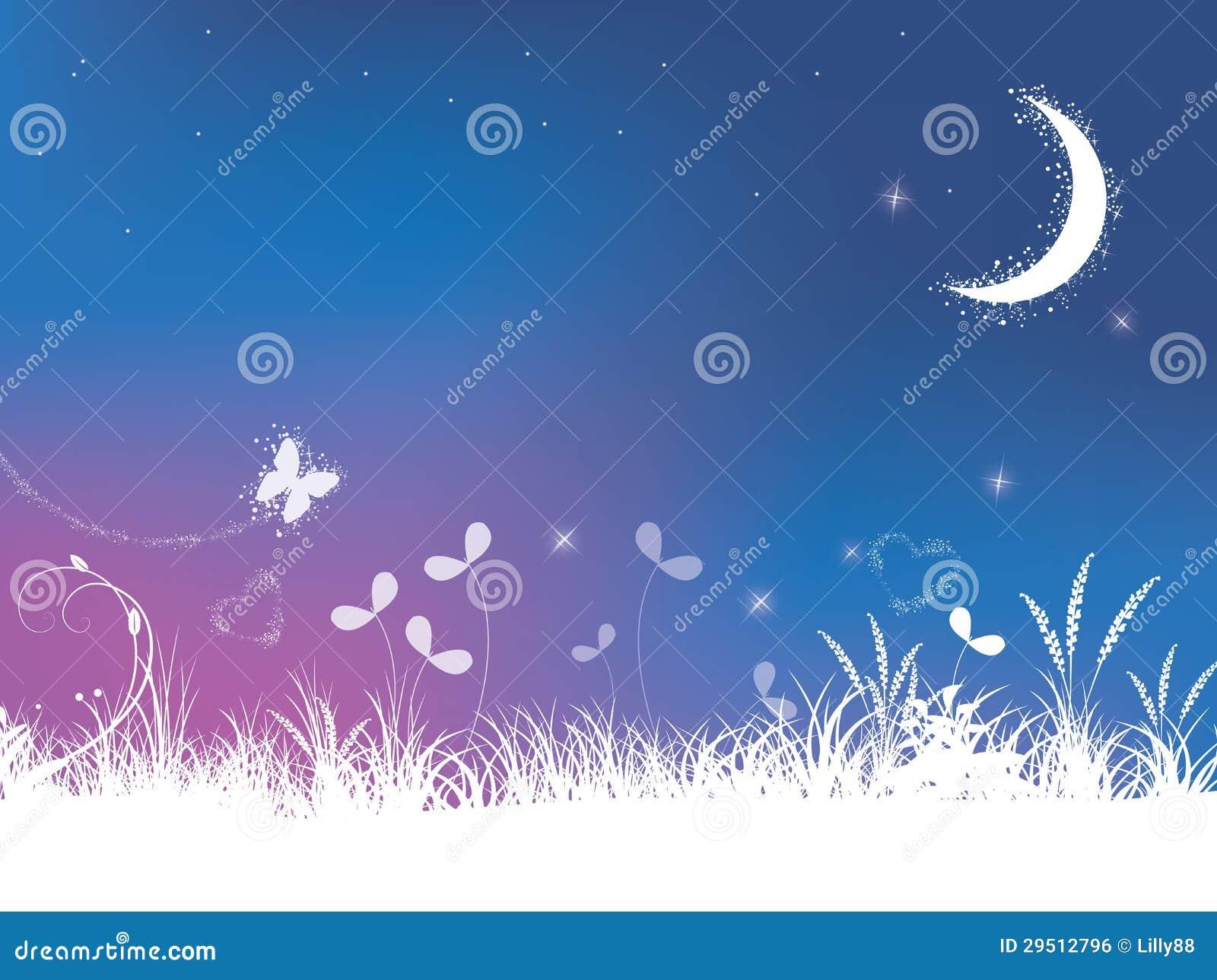 Gras en de achtergrond van de nachthemel
