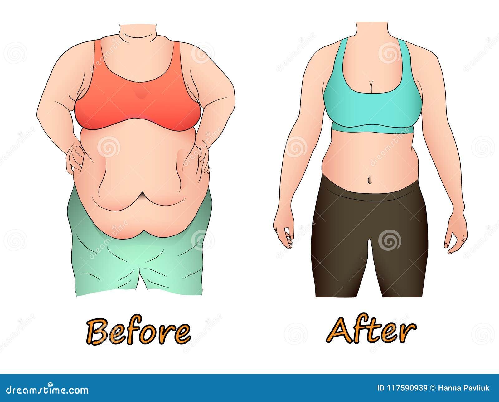 dieta grasa abdominal mujer