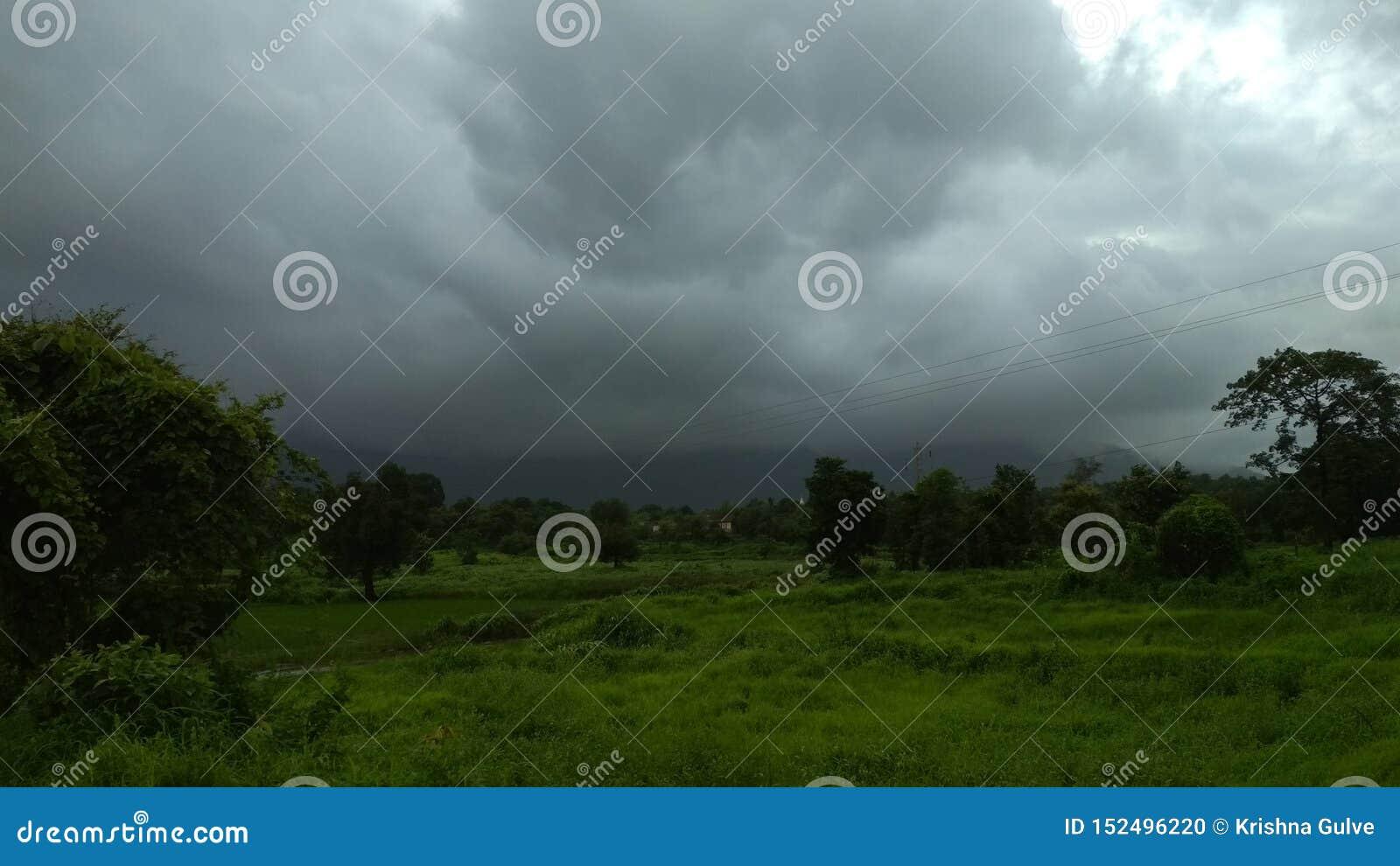 Grasrijk die landschap door donkere clouda in de schaduw wordt gesteld