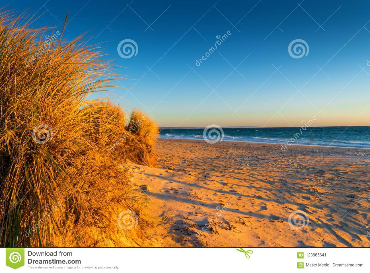 Grass and beach at sunset