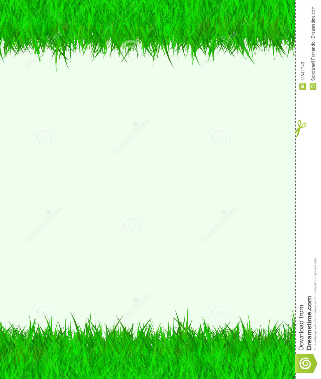 Grass border stock illustration image of grassy blank for Best grasses for borders