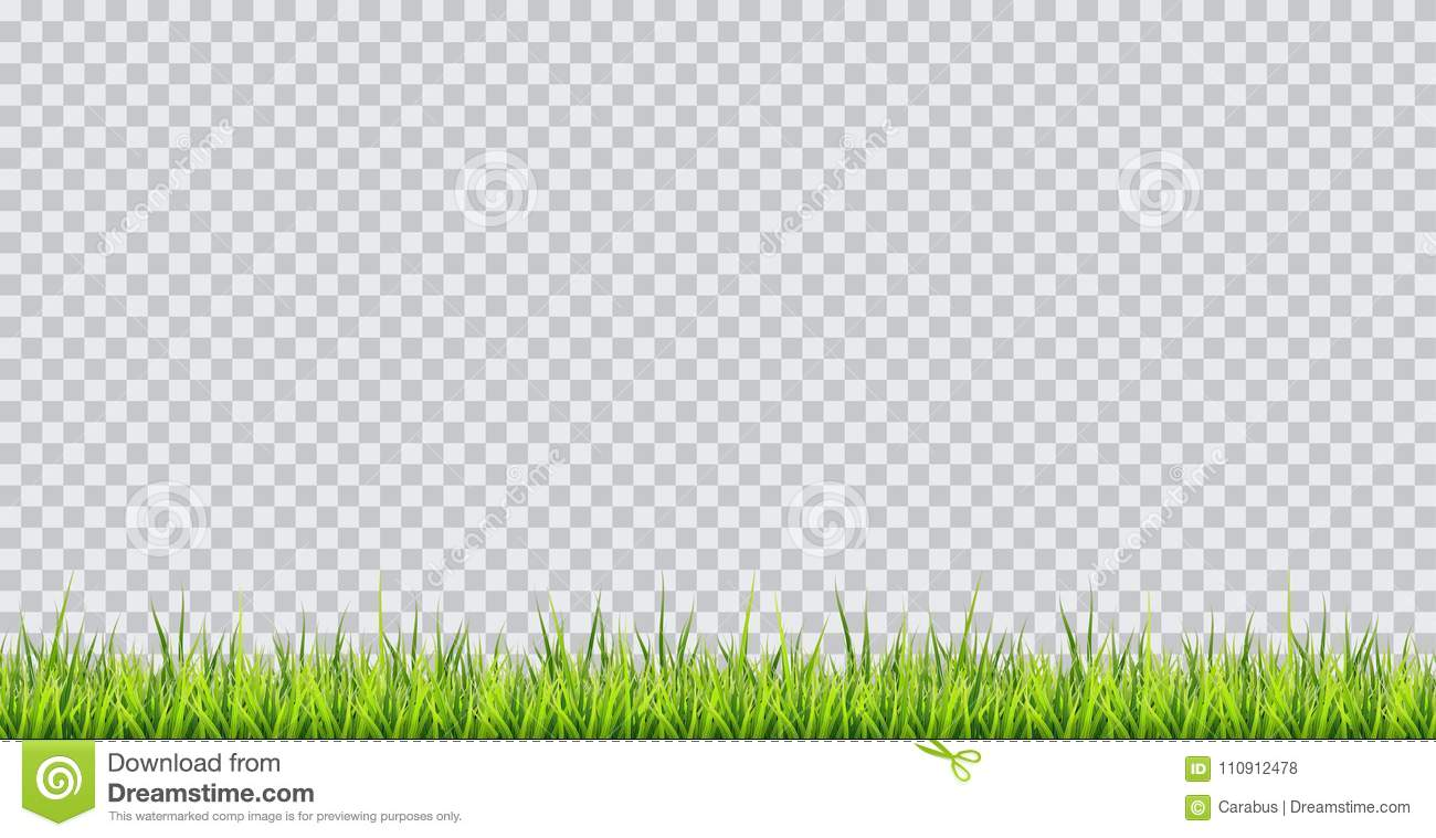 grass border no background cartoon grass border vector illustration on transparent background border illustration on transparent background stock