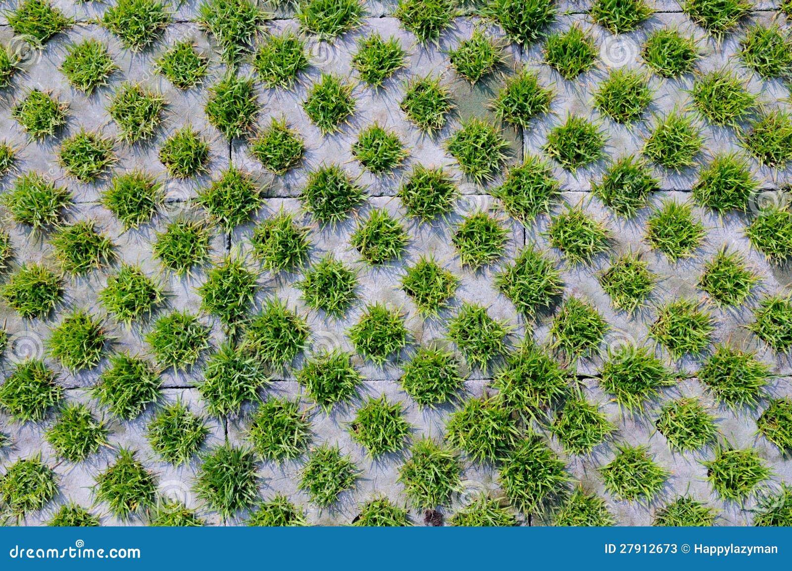 Grass And Brick Stock Image Image Of Pattern Closeup
