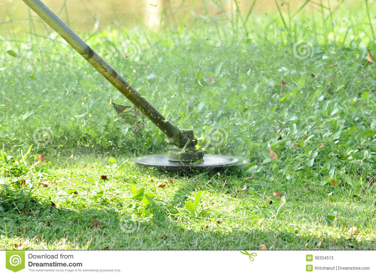grass cutter stock image  image of work  machine  lawn