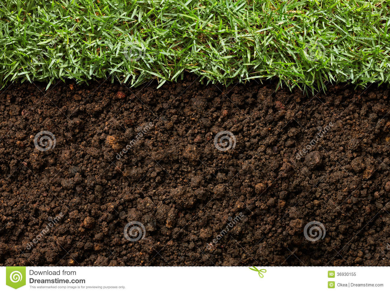 Grass and dirt stock image image of grass view nature for Soil and green