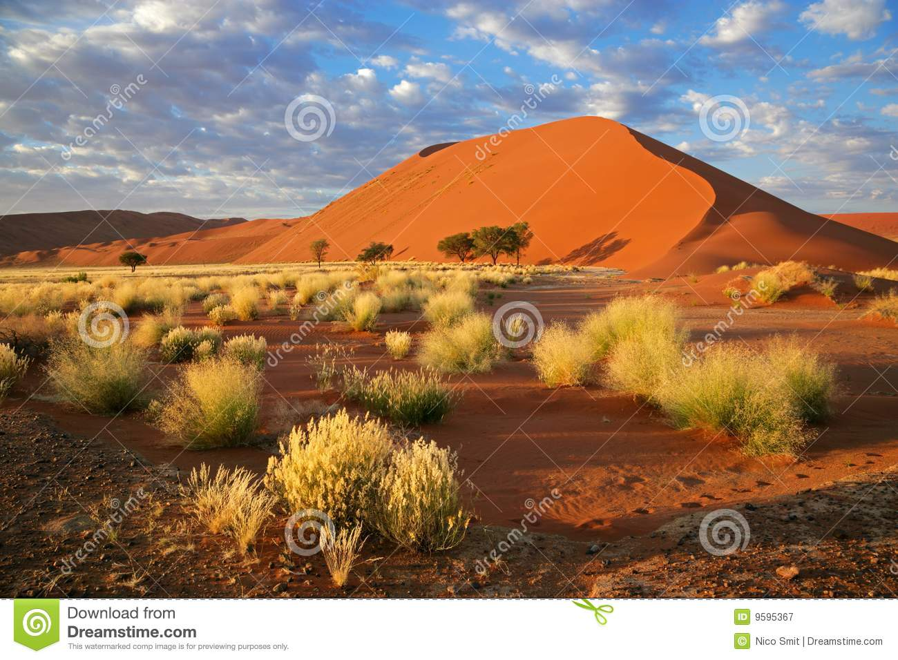 Grass, dune and sky, Sossusvlei, Namibia