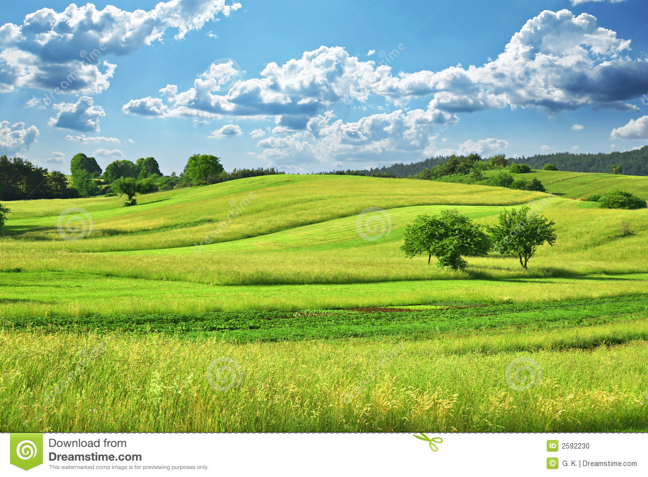 grass field clipart. royaltyfree stock photo download grass field clipart