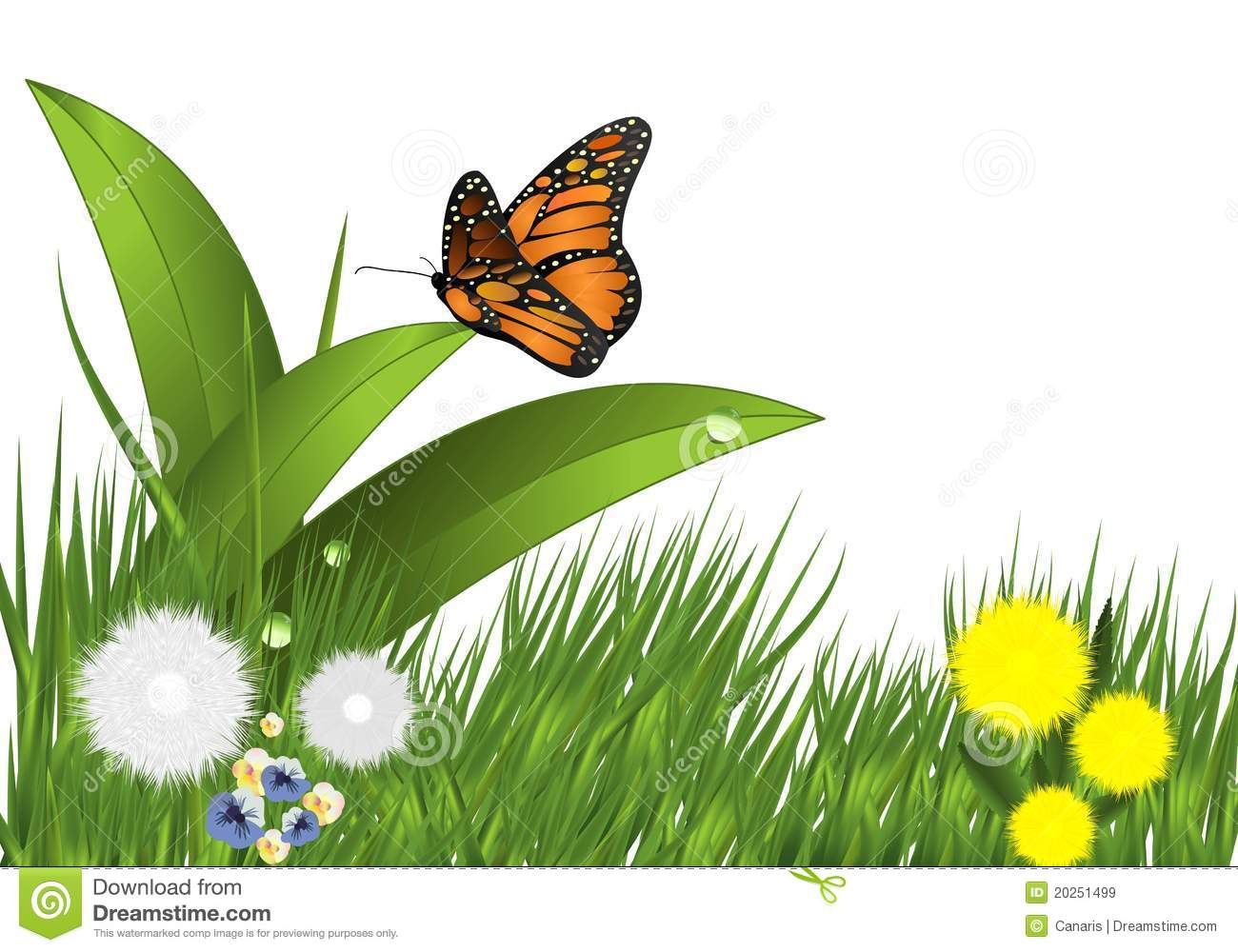 grass flowers and butterfly cdr vector royalty free stock images