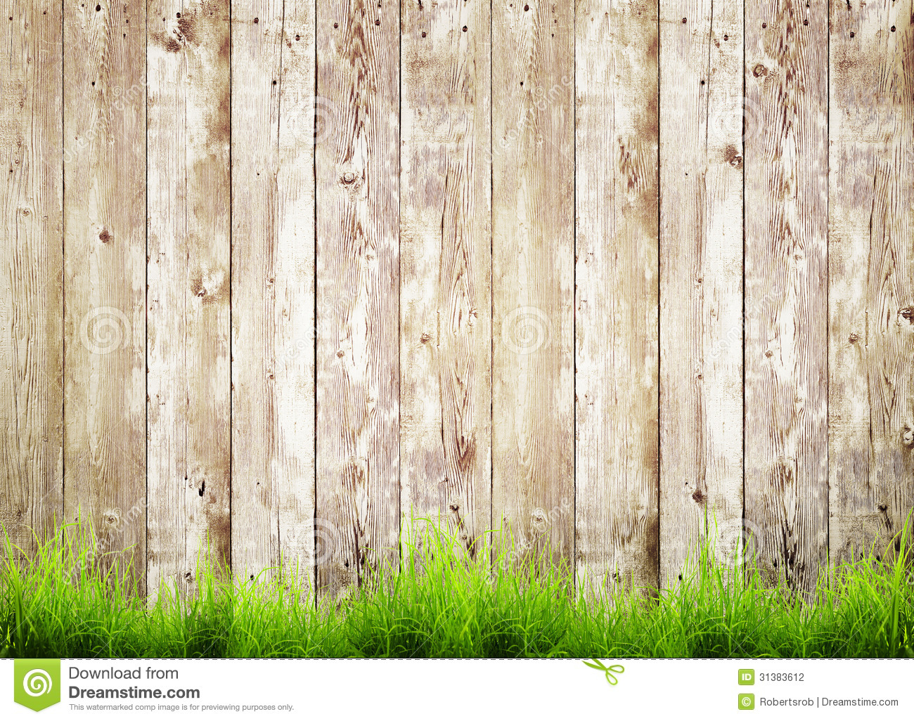 Fresh spring green grass and leaf plant over wood fence background.