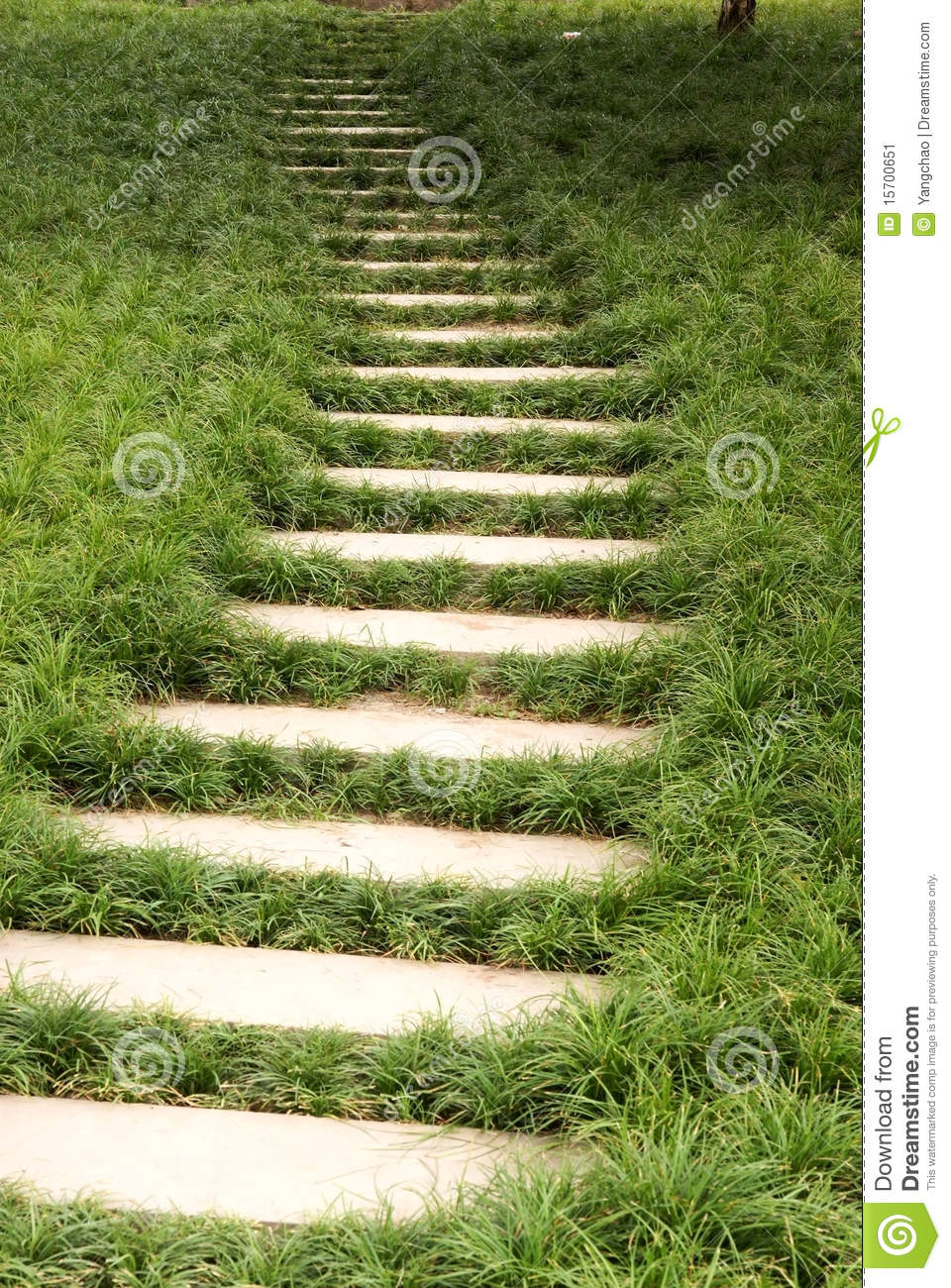 Grass Lawn With Steps Stock Image Image Of Footstep
