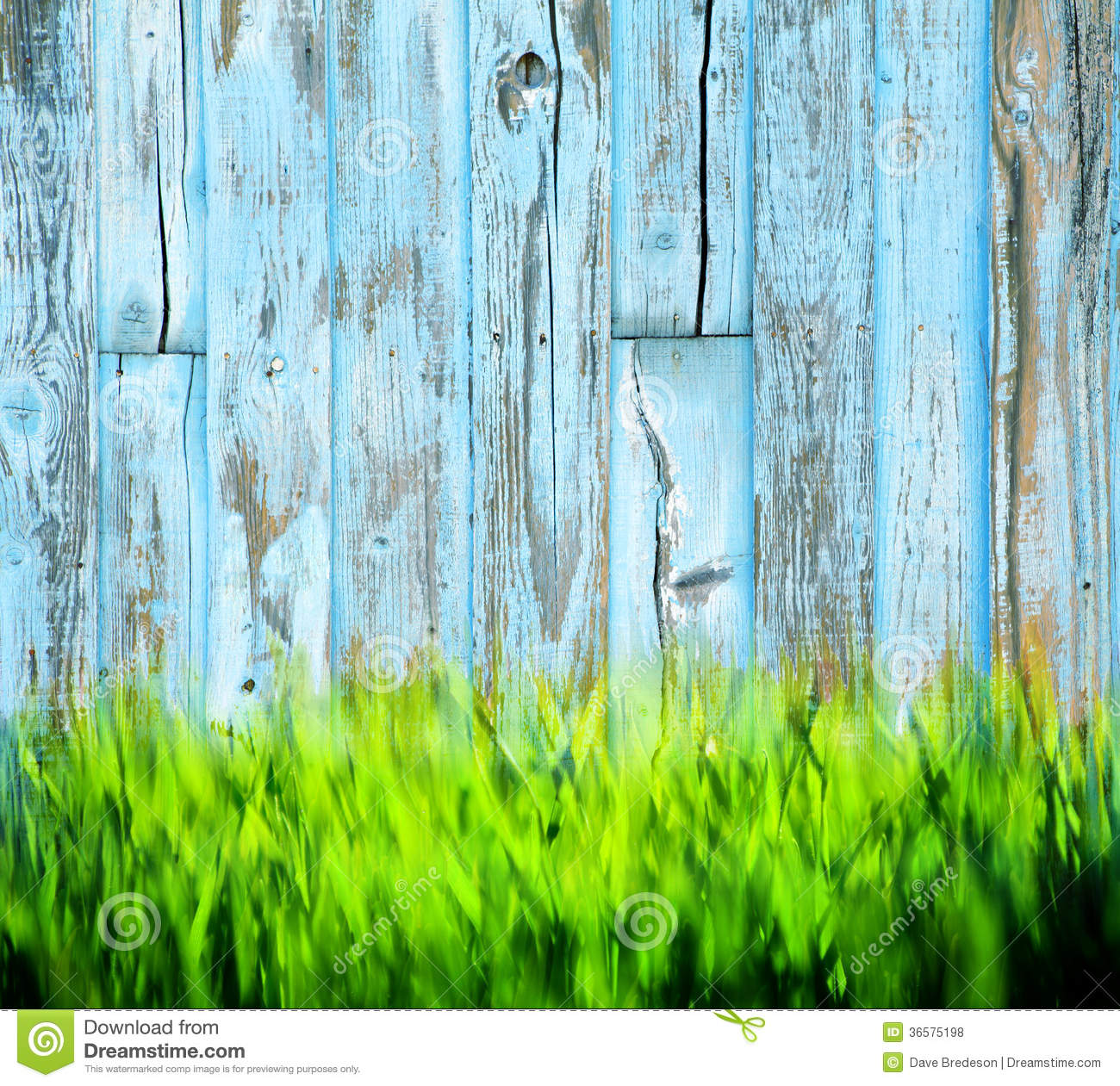 Rustic Wood Fence Background grass painted wood background royalty free stock photos - image