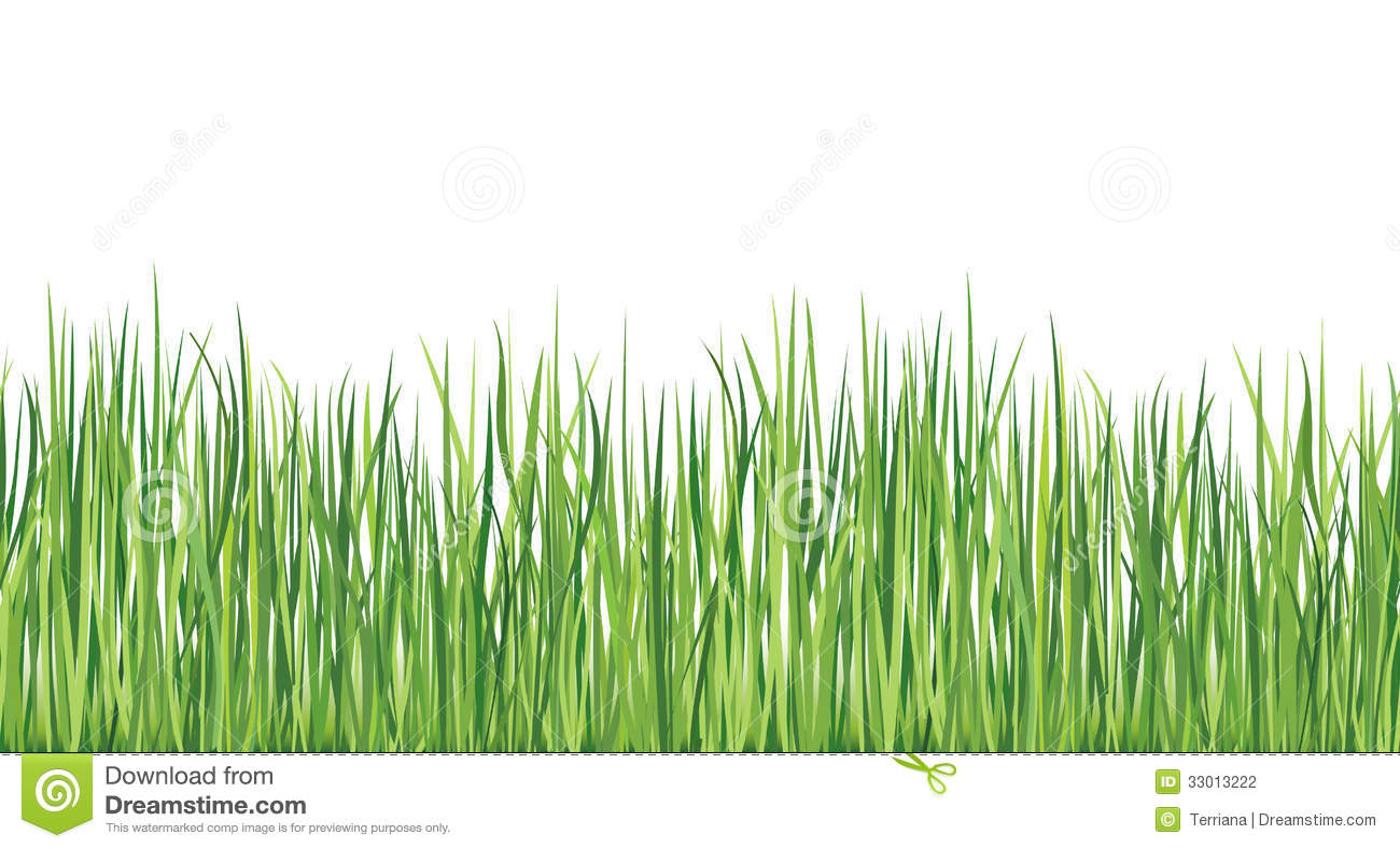 Grass seamless border vector illustration stock for Designing with grasses