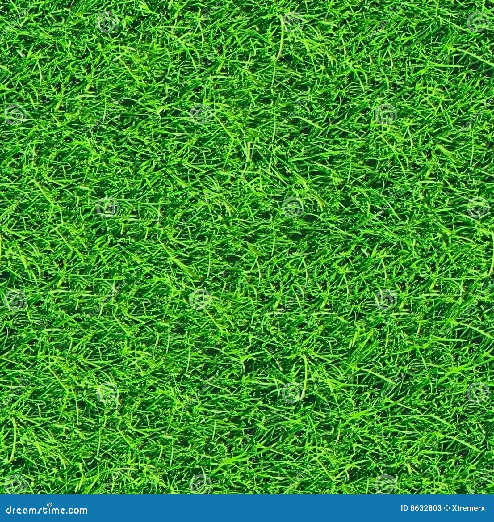 grass seamless pattern  2 of 2   stock photos
