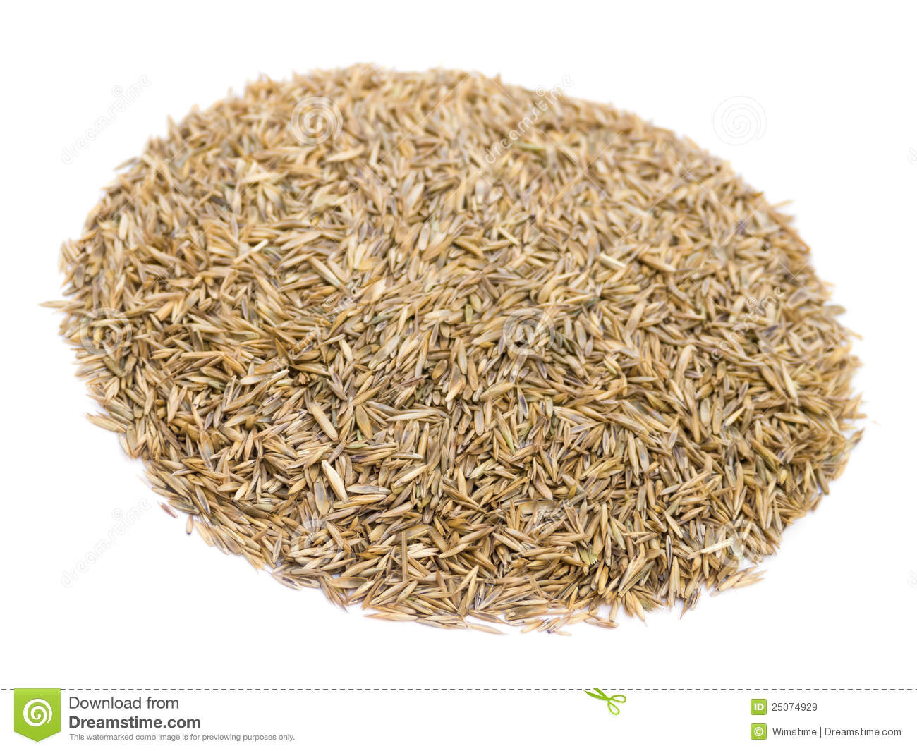 how to get free grass seed