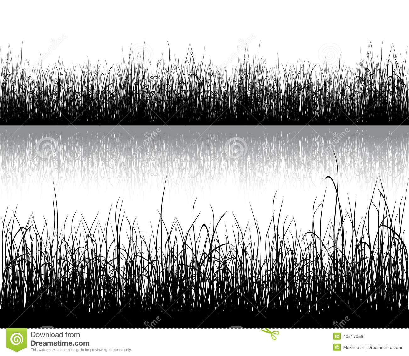 grass silhouette on white stock vector