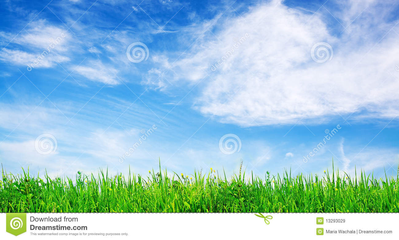Grass And Sky Royalty Free Stock Images Image 13293029