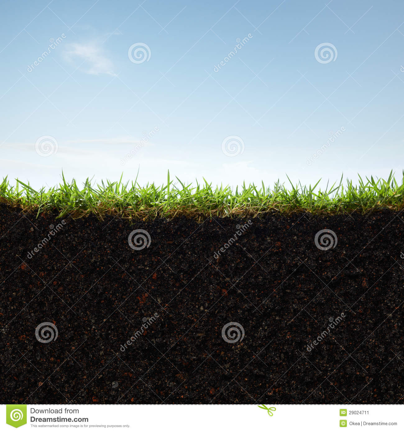 Grass And Soil Stock Image. Image Of Section, Lawn