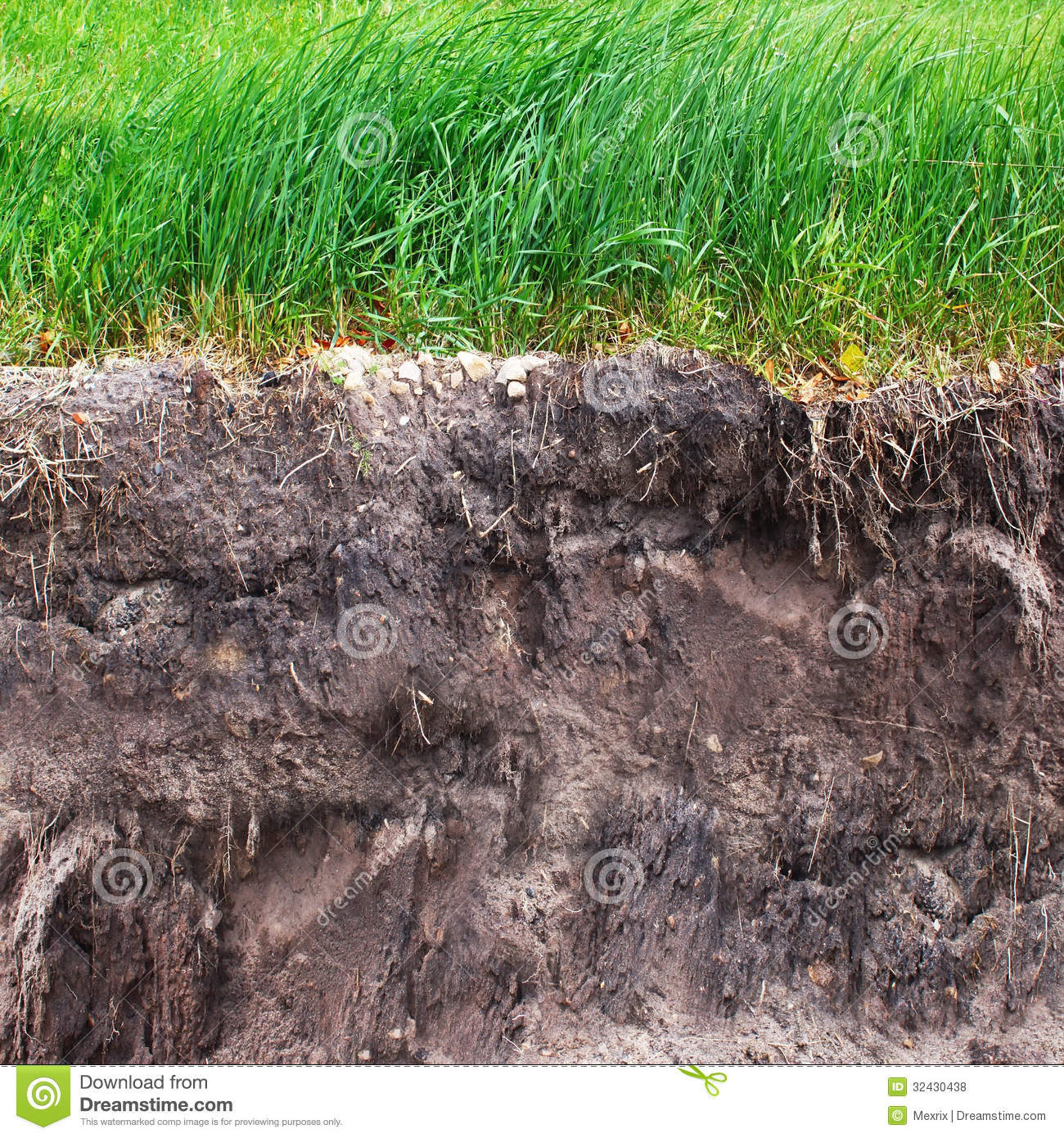 black soil information Strength of the soil and the related stability of slopes to consolidate all  information, a database of the properties of laterite soils in some localities of  nigeria was.