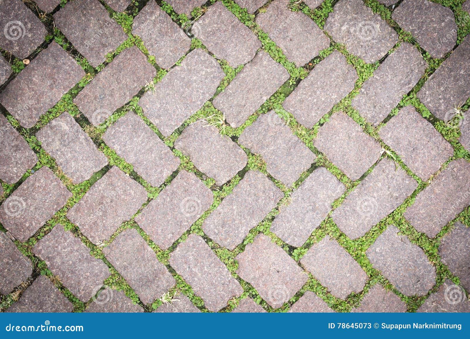 floor texture. Grass Stone Floor Texture Pavement Design  Stock Image of block green 78645073